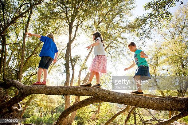 girls walking across a fallen tree trunk