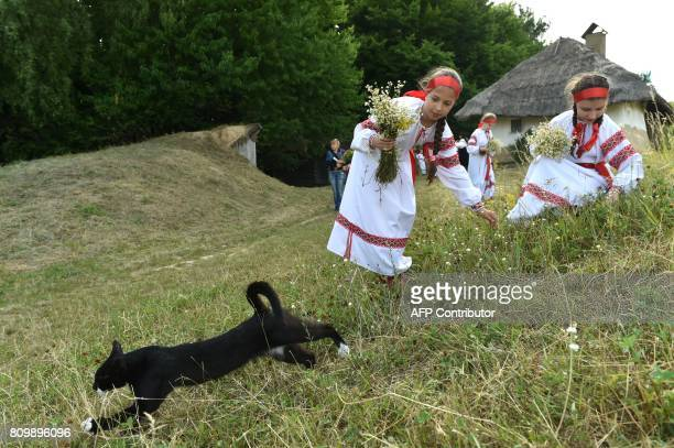 Girls wearing Ukrainian traditional clothes collect flowers to make wreaths during the celebrations of Ivana Kupala night an ancient heathen holiday...