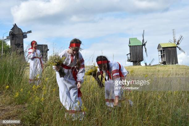Girls wearing Ukrainian traditional clothes pick flowers during the celebrations of Ivana Kupala night an ancient heathen holiday in the Pyrogove...
