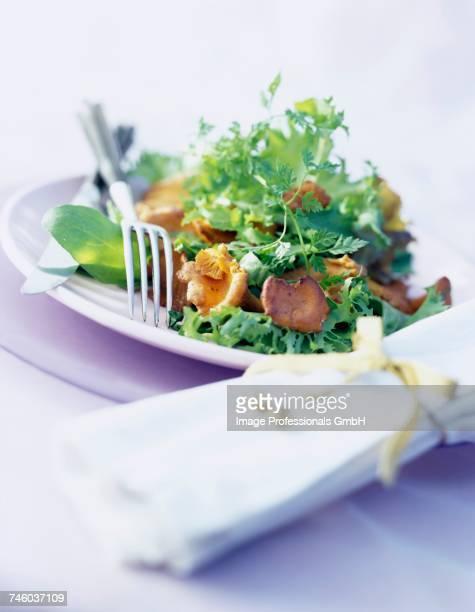 Girolle mushroom salad