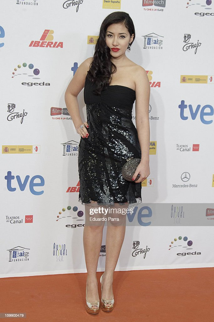 Giselle Calderon attends Jose Maria Forque awards photocall at Canal theatre on January 22, 2013 in Madrid, Spain.