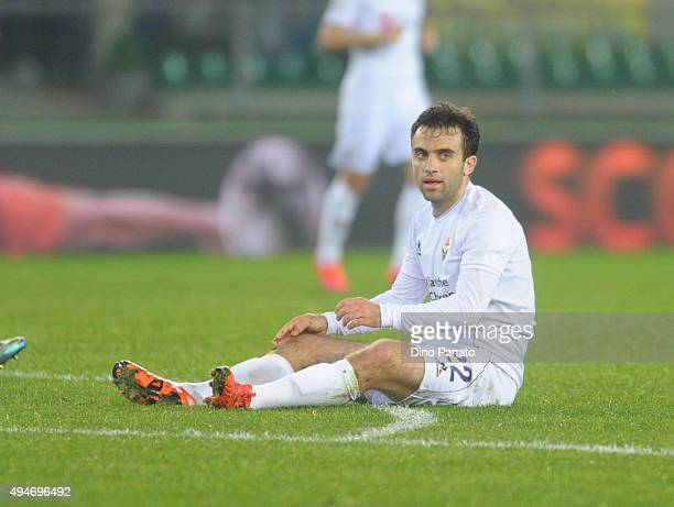 Giuseppe Rossi of ACF Fiorentina looks on during the Serie A match between Hellas Verona FC and ACF Fiorentina at Stadio Marc'Antonio Bentegodi on...