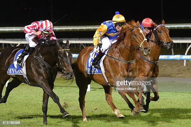 Give Us a Go ridden by Jason Lyon wins Visit Club Officer Group BM64 Handicap at Racingcom Park Racecourse on October 20 2016 in Pakenham Australia