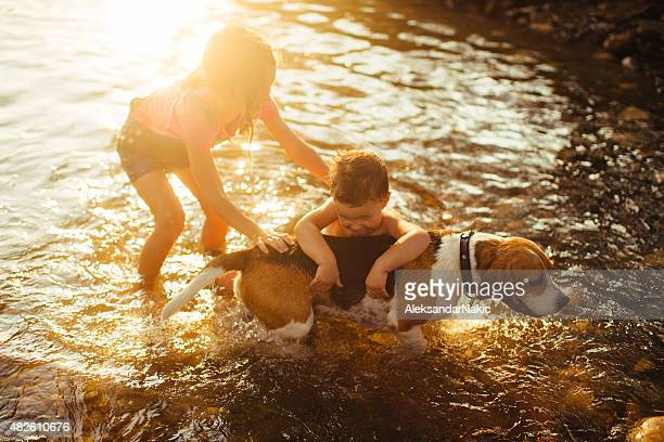 ギブ犬のバスルームには、川