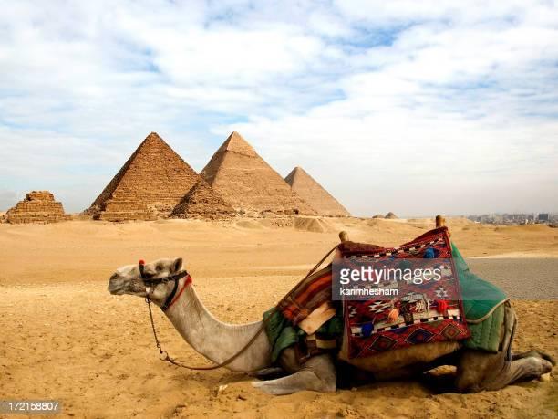 ギザのピラミッド群の風景