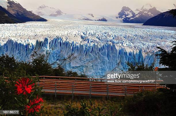 Glaciar Perito Moreno II