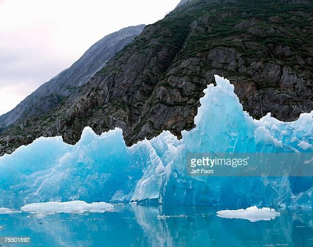 Glacier Bay NP, edge of Reid Glacier, Alaska.