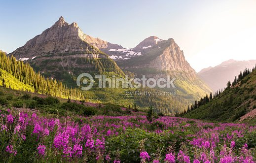 Glacier National Park : Stock Photo