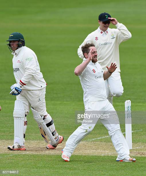 Glamorgan bowler David Lloyd celebrates after dismissing Leicestershire batsman Mark Cosgrove for nought during day two of the Specsavers second...