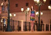 Glamorous Beauty, Outdoor Fashion at Night, Venice, Italy (XXXL)