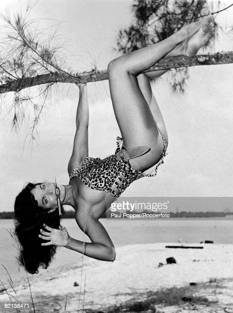 1954 American pinup glamour model Bettie Page born Nashville Tennessee pictured here in a 'Tarzan' like pose hanging upside down from a tree with a...
