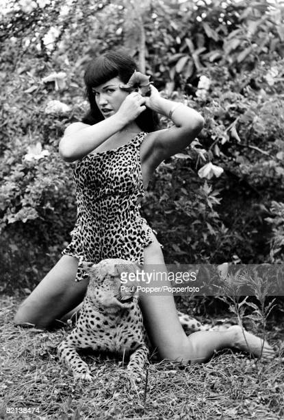 1954 American pinup glamour model Bettie Page born Nashville Tennessee pictured here with a cheetah while on a modelling assignment at Africa USA a...