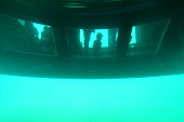 Glass bottomed catamaran below the water