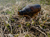 Glass brown bottle in the meadow on the grass.