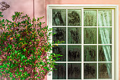 Glass door with condensation and a tree, high humidity. Texture of water on a glass.Phenomenon of nature and exterior concept.