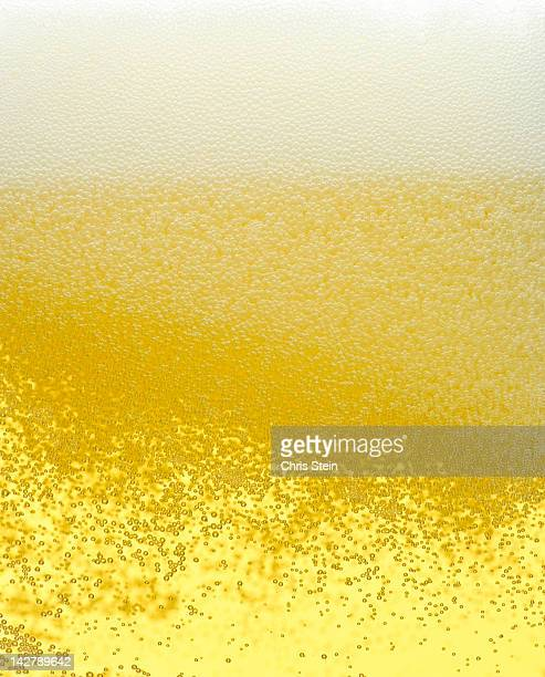 Glass full of Beer Foam