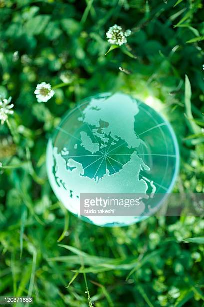 Glass globes on the grass.