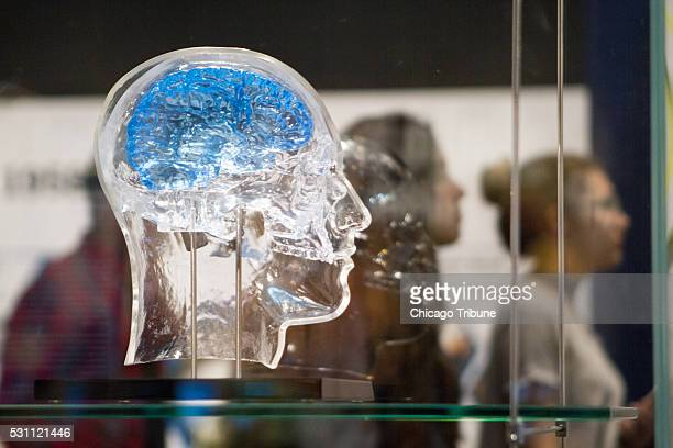 A glass head holds a Neural Interface for Memory Restoration sensor developed by DARPA which reads signals from the brain and stimulates neurons to...