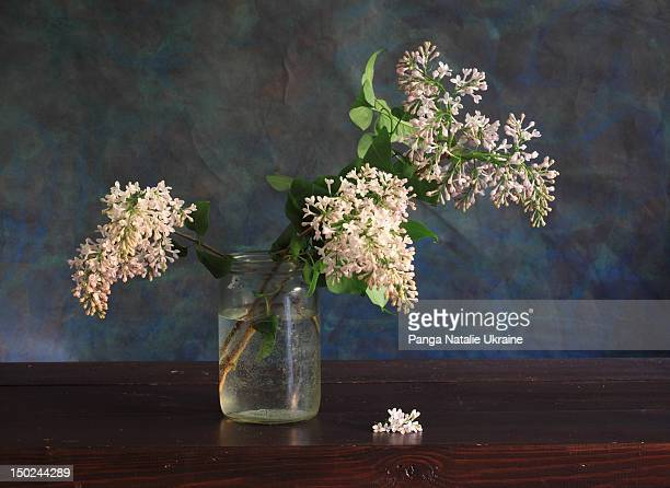 Glass jar with pale colored lilac twigs