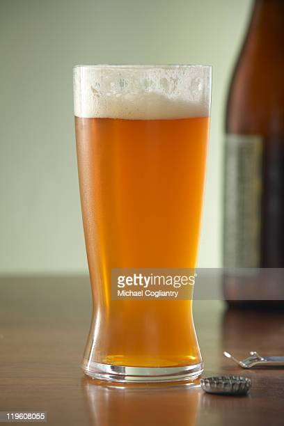 Glass of beer with bottle on green background
