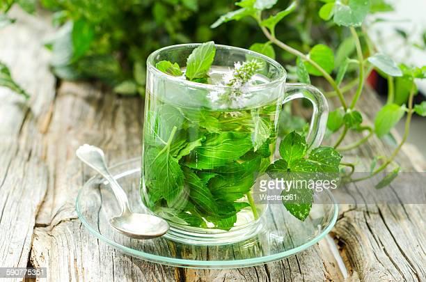 Glass of peppermint tea