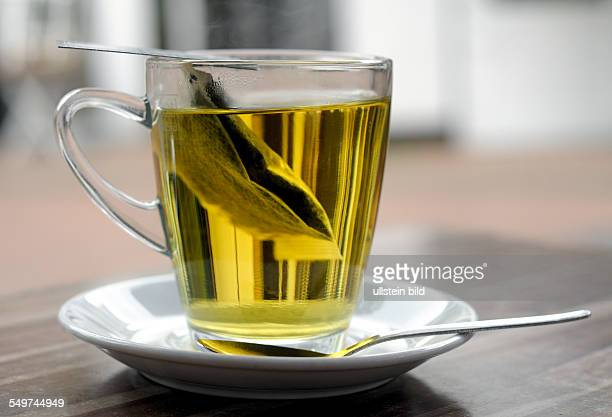 A glass of tea with tea bag mint tea