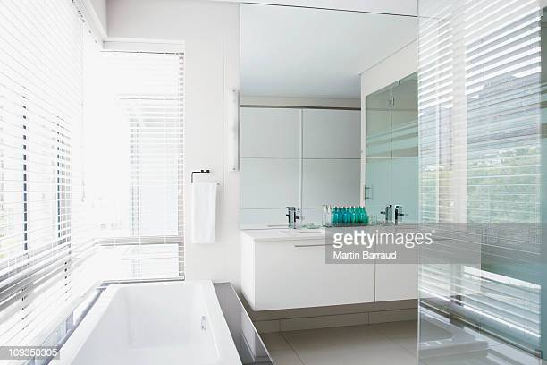 Glass walls and bathtub in elegant bathroom