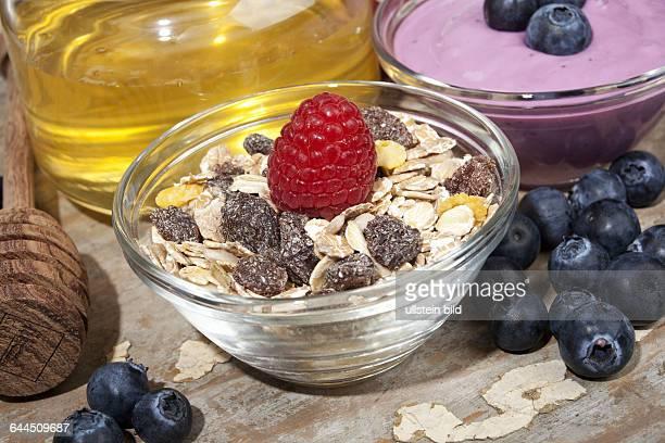 Glasschalen mit Cerealien und Joghurt |Glass bowls with cereal and yogurt|