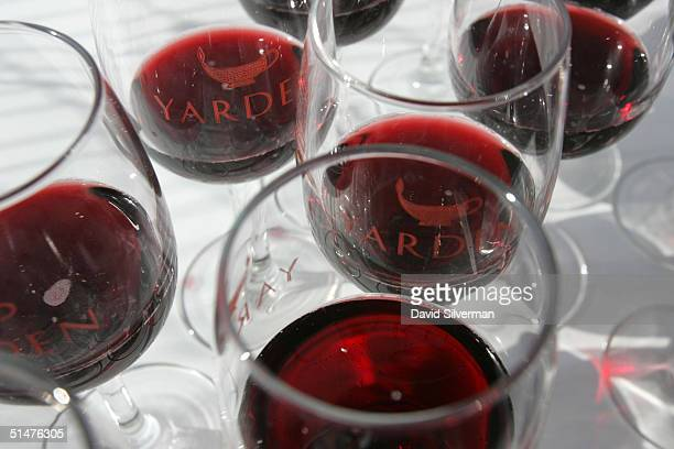 Glasses of red wine are ready to be served during the Golan Heights Winery's 'Golan Vintage 2004' international wine and culinary festival October 13...