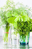 Glasses with dill, lemon balm, parsley