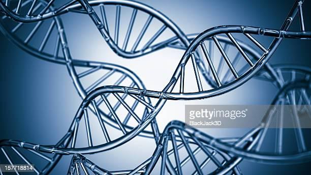 Kupfer-DNA