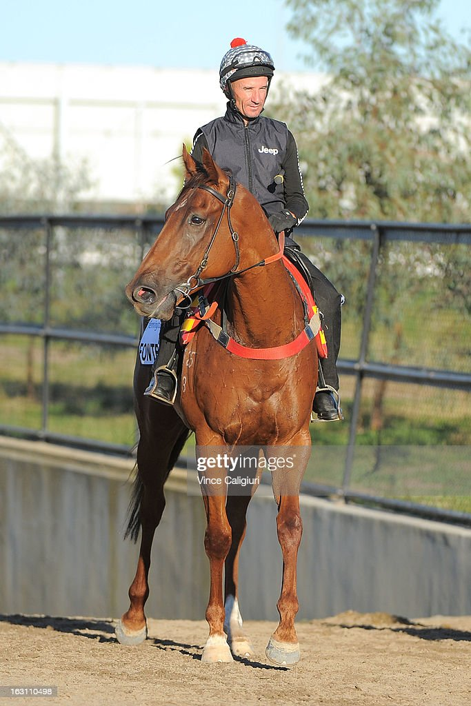 <a gi-track='captionPersonalityLinkClicked' href=/galleries/search?phrase=Glen+Boss&family=editorial&specificpeople=194758 ng-click='$event.stopPropagation()'>Glen Boss</a> riding Fontelina returns to the stables after a trackwork session at Flemington Racecourse on March 5, 2013 in Melbourne, Australia.