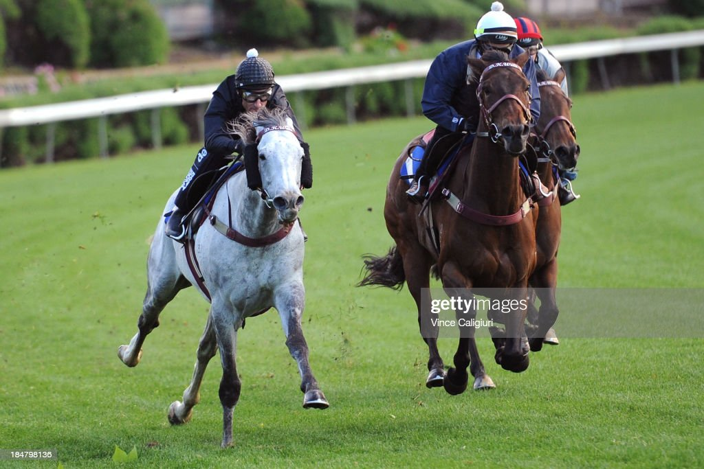 <a gi-track='captionPersonalityLinkClicked' href=/galleries/search?phrase=Glen+Boss&family=editorial&specificpeople=194758 ng-click='$event.stopPropagation()'>Glen Boss</a> (L) riding Puissance De Lune during a trackwork session at Moonee Valley Racecourse on October 17, 2013 in Melbourne, Australia.