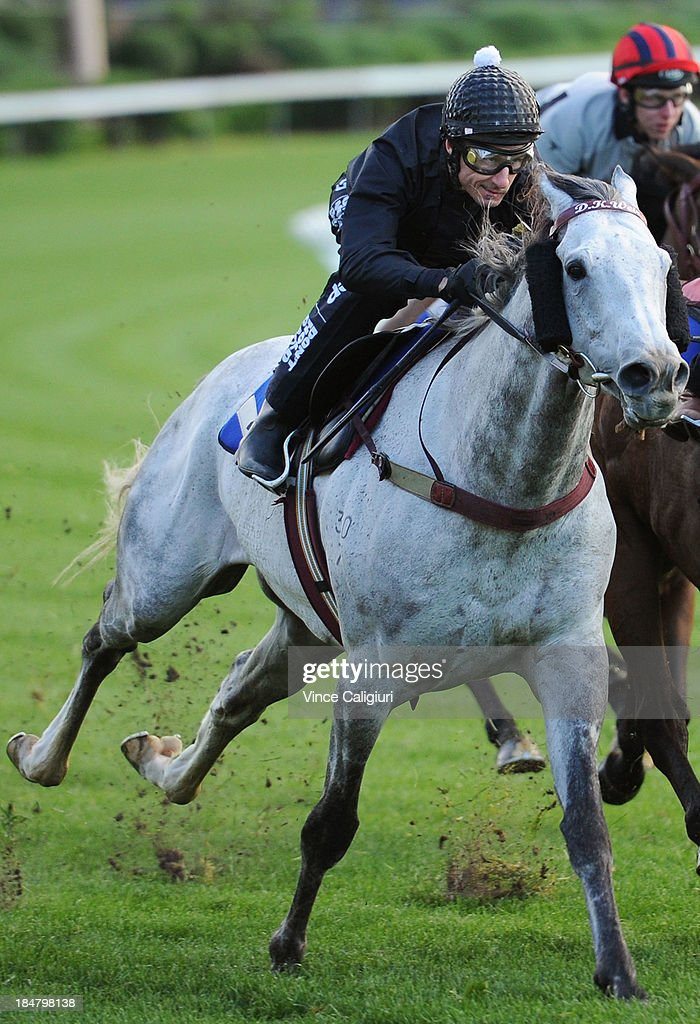 <a gi-track='captionPersonalityLinkClicked' href=/galleries/search?phrase=Glen+Boss&family=editorial&specificpeople=194758 ng-click='$event.stopPropagation()'>Glen Boss</a> riding Puissance De Lune during a trackwork session at Moonee Valley Racecourse on October 17, 2013 in Melbourne, Australia.