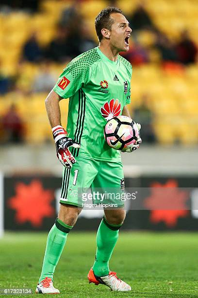 Glen Moss of the Phoenix talks to his teammates during the round three ALeague match between the Wellington Phoenix and Sydney FC at Westpac Stadium...