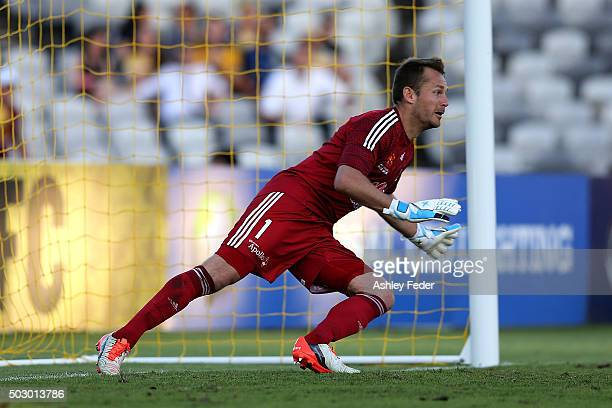 Glen Moss of the Phoenix waits to save a penalty kick during the round 13 ALeague match between the Central Coast Mariners and the Wellington Phoenix...