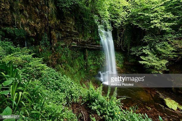 Glencar Waterfall, Sligo, Ireland