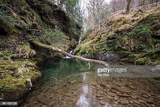 Glendalough Pool