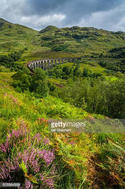GlenFinnan Viaduct and flowers