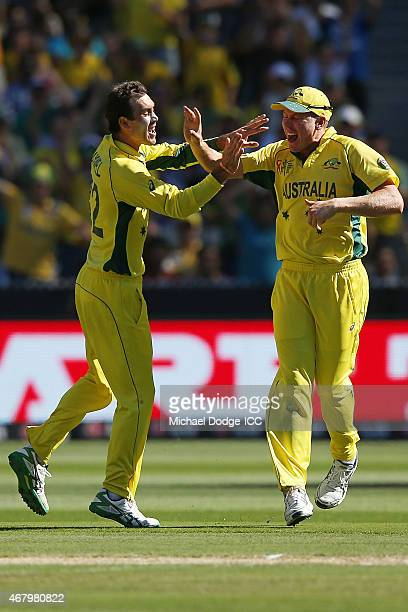 Glenn Maxwell of Australia celebrates the wicket of Martin Guptill of Zealand with James Faulkner during the 2015 ICC Cricket World Cup final match...