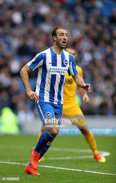 Glenn Murray of Brighton and Hove Albion during the Sky Bet Championship match between Brighton Hove Albion and Preston North End at Amex Stadium on...
