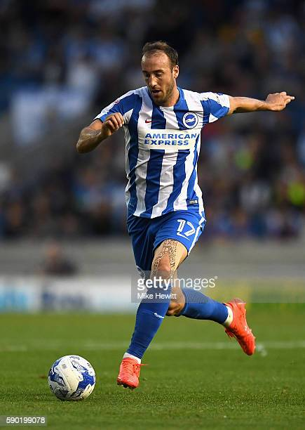 Glenn Murray of Brighton and Hove Albion in action during the Sky Bet Championship match between Brighton Hove Albion and Rotherham United at Amex...