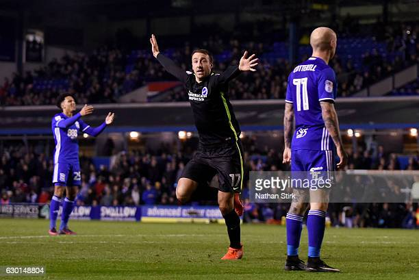 Glenn Murray of Brighton Hove Albion celebrates after scoring the winning goal during the Sky Bet Championship match between Birmingham City and...