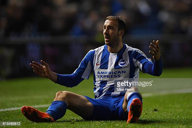 Glenn Murray of Brighton pleads with the linesman after a robust challenge during the Sky Bet Championship match between Brighton Hove Albion and...