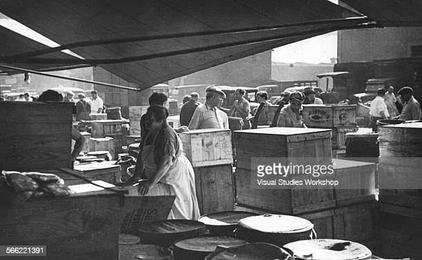 Fulton fish market stock photos and pictures getty images for Fish market bronx