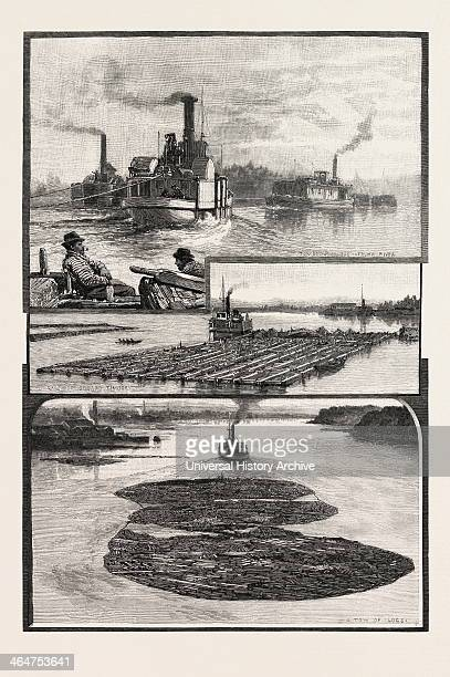 Glimpses Of The Lower Ottawa The Lumber Trade Canada Nineteenth Century Engraving
