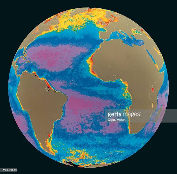 Global Phytoplankton