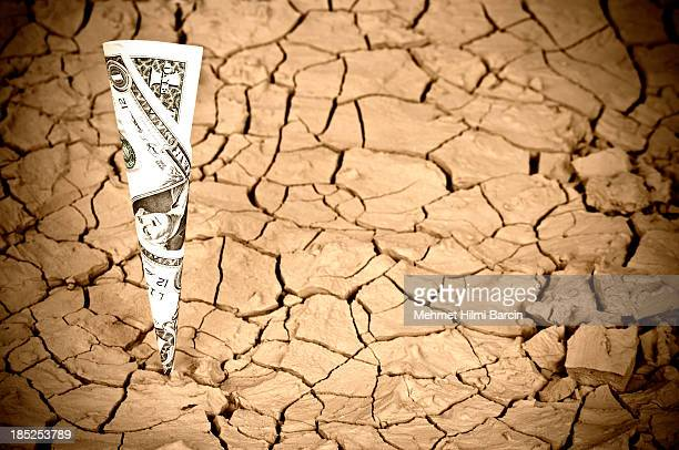 Réchauffement de la planète et de la croissance de l'argent