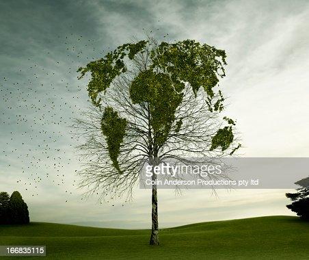 Globe map carved in tree in field