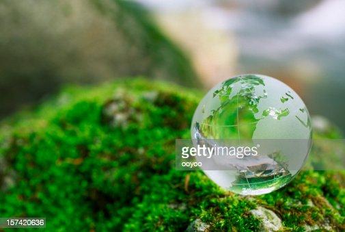 Globe on a moss rock